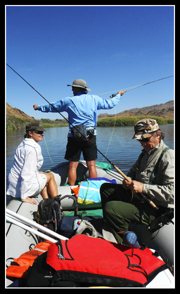 wilderness raft fly fishing orange river